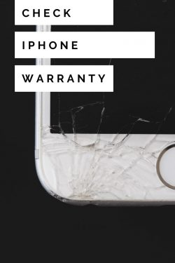 check iphone warranty